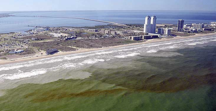 A red tide blooms off the coast of Texas.