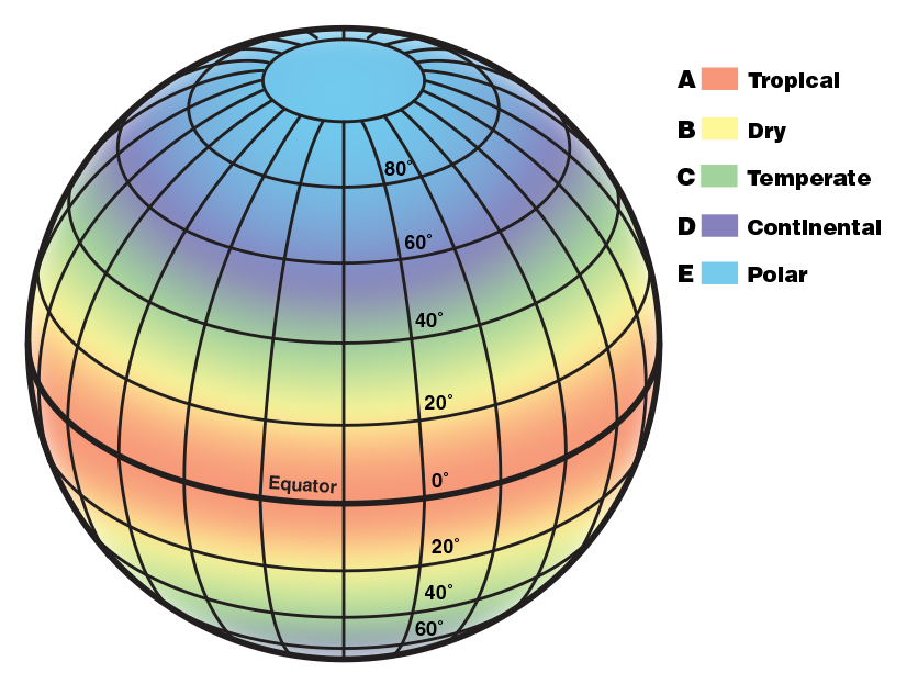 An illustration of a globe with latitude and longitude lines