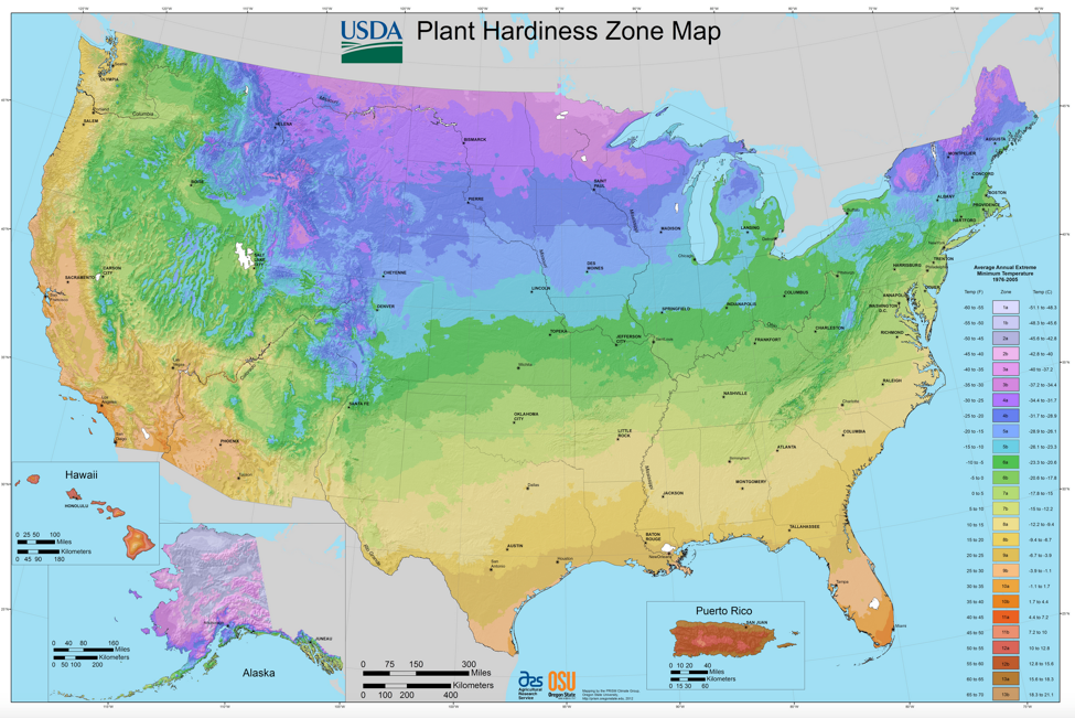 A map of plant hardiness zones in the United States