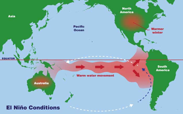 Map shows conditions in an el Niño year, the trade winds weaker, allowing warm surface water in the Pacific to pile up off the west coast of South America.