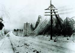 Power and telephone cables weighed down by a recent ice storm.