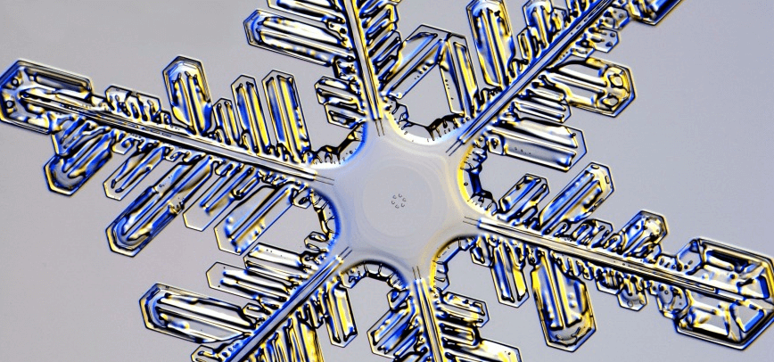 up close photo of a snowflake
