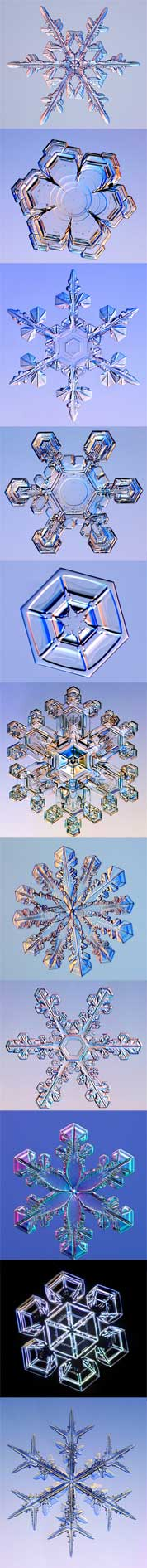 Photomicrographs of six different snow crystals.