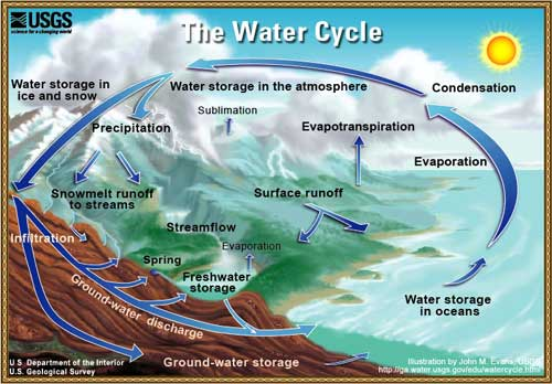 Drawing of water cycle. Shows how water evaporates from lakes, rivers, and soil, sublimates from ice and snow, and gets into air from plant transpiration. Water vapor condense to form clouds. Clouds move to different locations, where precipitation falls as rain or snow.