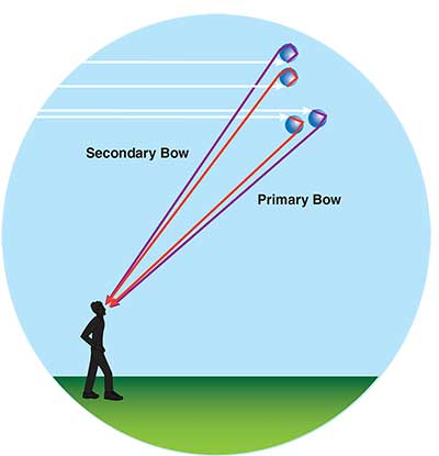 Drawing shows viewing angle for primary and secondary rainbows.
