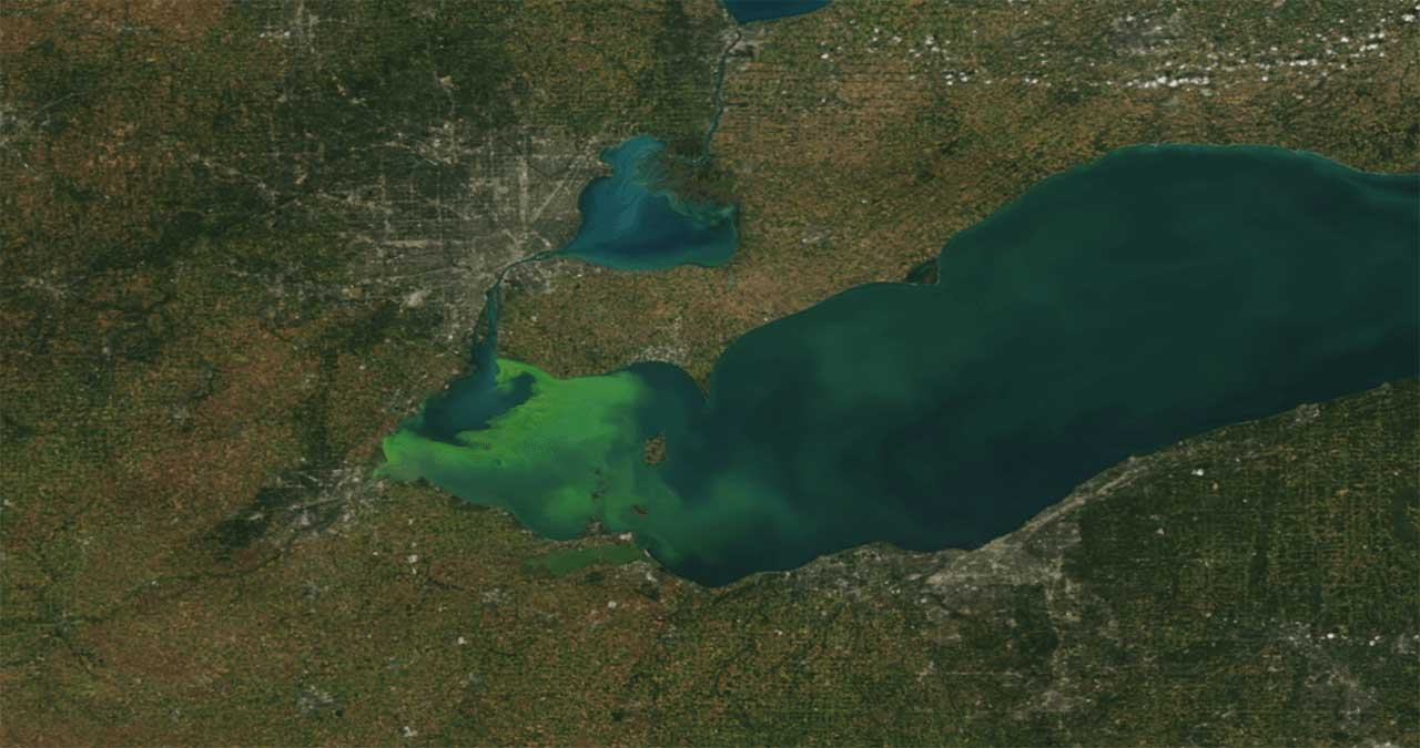 Image of an algal bloom in Lake Erie.